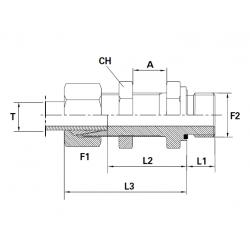 Reductie METRIC Filet Exterior(cu olandeza) lung con 24 ERMETO si piulita - BSP Filet Exterior fara con, cu garnitura