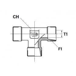 Adaptor T METRIC con 24